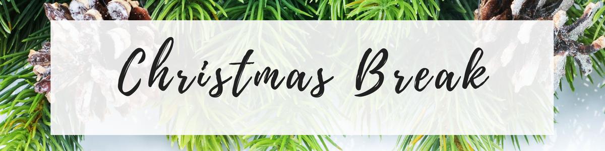 ChristmasThanksgivingSpring Break (13)
