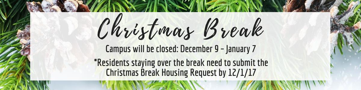ChristmasThanksgivingSpring Break (7)