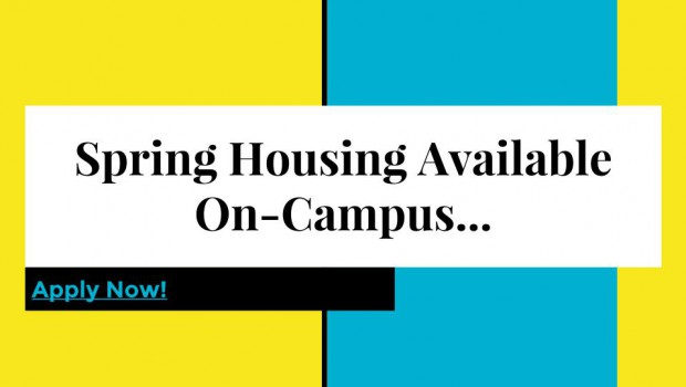 Spring Housing Application and Information