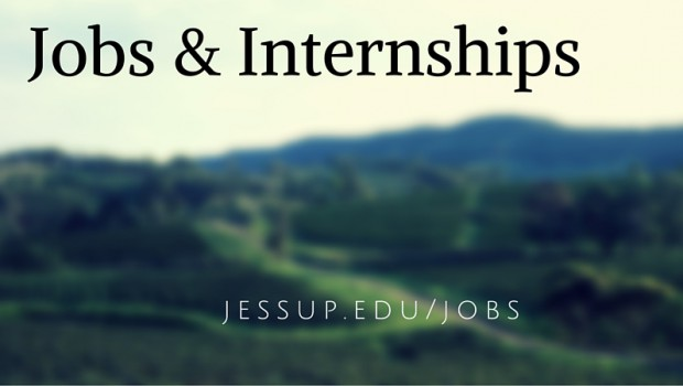 Looking for a JOB or INTERNSHIP?