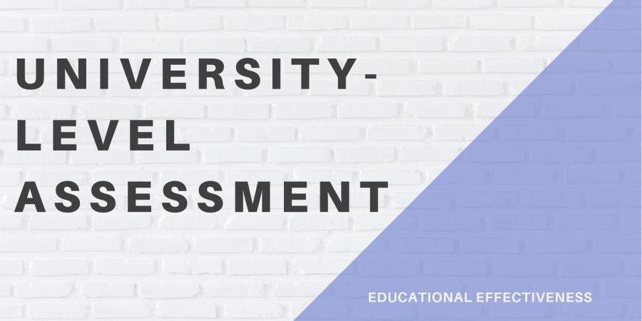 University-Level Assessment